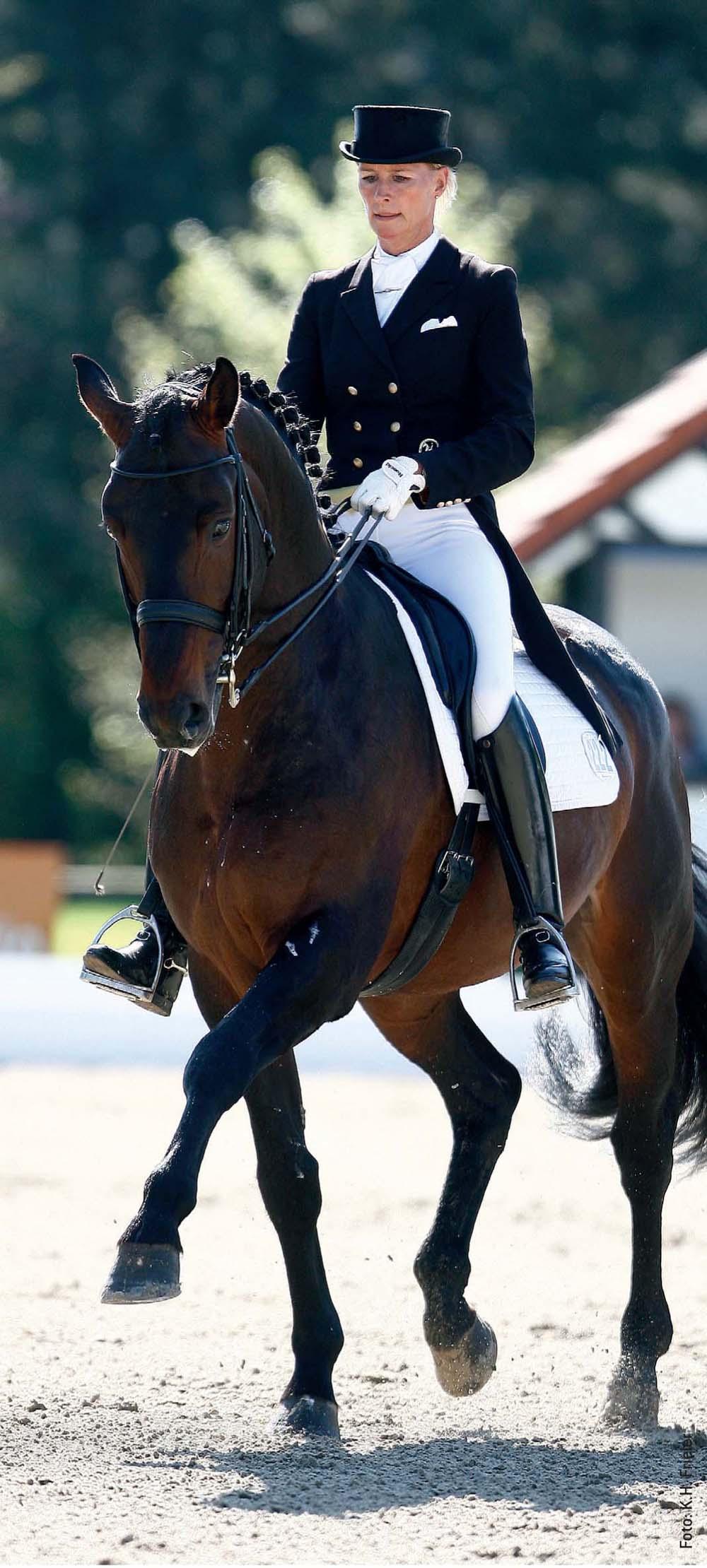Dressurreiter, auf unserem Foto Brigitte Wittig, setzen die Kandare zur Verfeinerung der Hilfengebung ein, wodurch die Kommunikation mit dem Pferd sensibler wird.