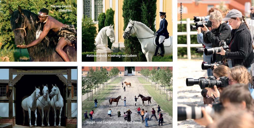 Fotoseminare und Fotoreisen mit Gabriele Boiselle