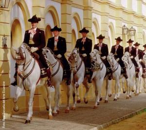 Die Königlich-Andalusische Hofreitschule reist aus Jerez de la Frontera nach Wien.