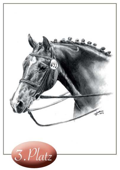 3. Platz: Kathina Terharn (16 ) (bitte noch Adresse nachreichen) Dies ist ein hervorragend gelungenes Portrait eines Leistungspferdes, ebenfalls technisch perfekt ausgeführt.