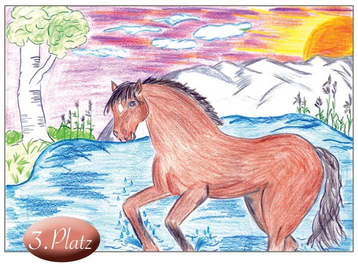 3. Platz: Eva Herrmann (10) Dies ist ein wunderbares Traumpferd in traumhafter Umgebung, mit viel Liebe