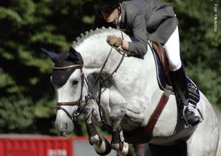 Nationenpreis Springen - Pferd im Sprung