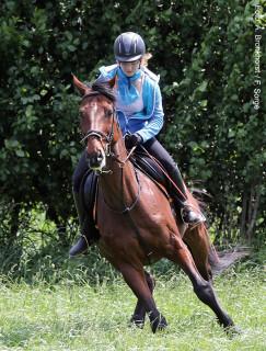 Wenn der Übermut des Pferdes zum Buckeln, zur Seite Springen oder gar Durchgehen führt, kann es für den Reiter gefährlich werden.