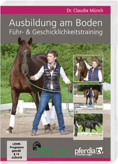 Ausbildung Bodenarbeit Pferd