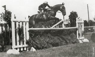 1954 mit Falco nahm Hans Helmut Sievers an Großen Preisen teil.
