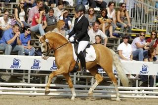 Bei den Reitponyprüfungen auf den DKB-Bundeschampionaten sitzen häufig erwachsene Ausbilder im Sattel, wie hier Jana Freund, die schon zahlreiche Ponys zum Sieg geführt hat. Hier stellt sie FS Mr. Right vor.