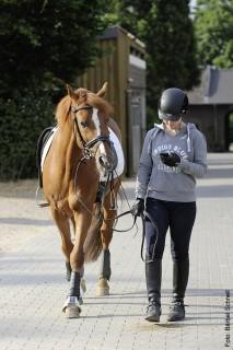 Wer dem Handy mehr Aufmerksamkeit als dem Pferd schenkt, unterschätzt die Gefahr, wenn das Pferd sich mal erschrickt.