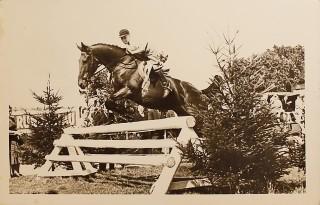 Peter Luther beim Turnier in der Wilstermarsch mit der Stute Flitze. Foto: privat