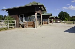 6000 Quadratmeter Auslauf haben die 21 Pferde des Aktivstalls, zuzüglich zehn Hektar Weidefläche.