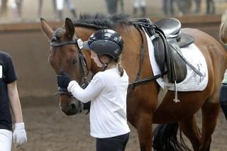 Viele der jungen Reiter haben ein sehr vertrauensvolles Verhältnis zu ihrem Lieblingspferd.