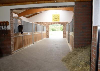 Großzügig, luftig und hell ist der kleine Stall mit  16 Quadratmeter großen Boxen.