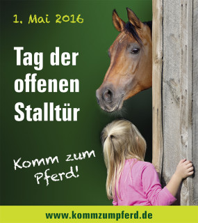 3.16_4_Komm_zum_Pferd