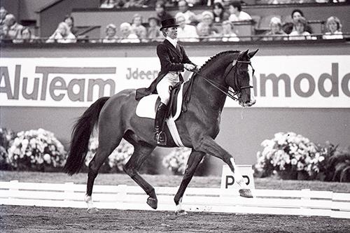 Für die Dressurkenner war er der Inbegriff des perfekten Dressurpferdes: Der Holsteiner Corlandus gewann mit Margit Otto-Crépin unter anderem olympisches Silber 1988 in Seoul.
